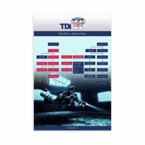 TDI Flowchart Poster-0
